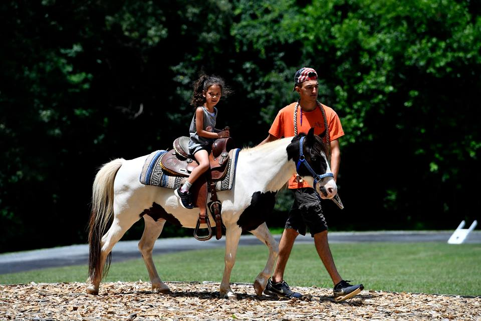 Washington DC Metro Company Pony Rides