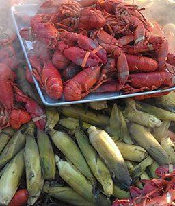 lobster-