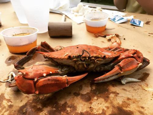 Washington Maryland Family Crab & Barbeque Feast